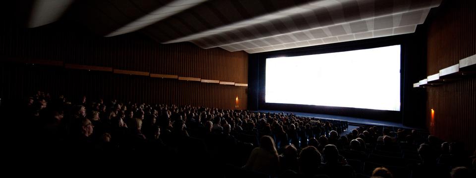 Show show international publikum  c  yorck kinogruppe philipp plum
