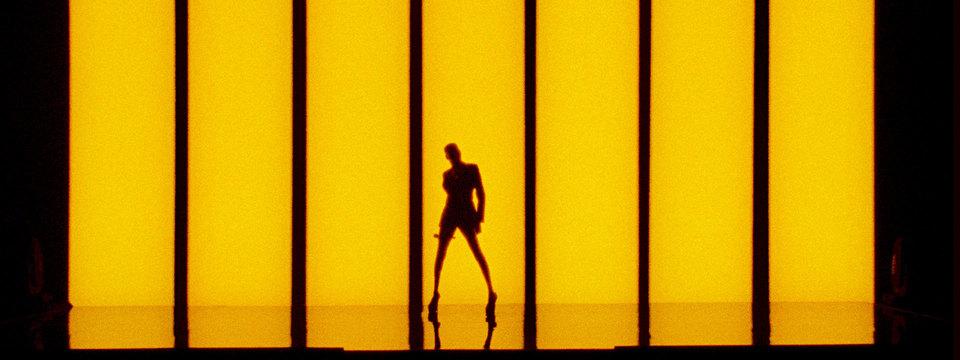Grace Jones: Bloodlight and Bami - Das Leben einer Ikone